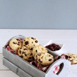 Μπισκότα με καρύδα, cranberries και λευκή σοκολάτα