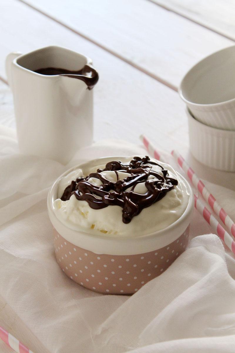 Frozen yogurt (3)